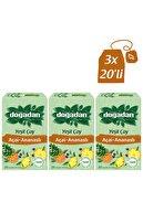 Doğadan Yeşil Çay Ananas  Açaili 20'li Bardak Poşet X3