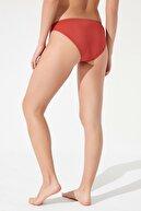 Penti Kadın Tarçın Basic Slip Bikini Altı