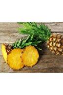 TROPİK SEPETİ Ananas - 2 Adet