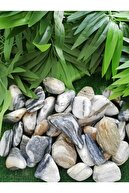 Ekodoğa Siyah Beyaz Çizgili Dolomit Taş 1 Kg 3-6 Cm Bahçe Süs Taşı Dekoratif Taşı