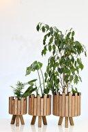 Hakan Mobilya Çam Rengi Ahşap 3'lü Kale Model Saksı Standı Seti Dekoratif Çiçeklik Balkon Bahçe Ahşap Saksılık