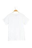 Levi's Kadın The Perfect Tee Lse_Sportswear Logo Fıl T-Shirt 17369-1512