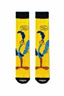 CARNAVAL SOCKS 5'li Çizgi Film Karakterleri Desenli Renkli Çorap Kutusu
