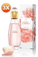 Avon Celebre Kadın Parfüm Edt 50 ml 3'lü Set 5050000101585