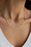 sviesasilver Kadın Altın Kaplama Gümüş Italyan Zincir Kolye