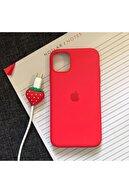 SUPPO Iphone 11 Model Logolu Lansman Kılıf Kablo Koruyucu