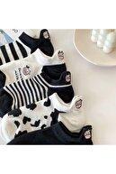 T-Socks Kadın Siyah Ve Beyaz Panda Desenli Nakışlı Patik Çorap 5 Çift