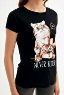 Fullamoda Kedi Baskılı Tshirt