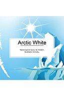 Car Freshner Little Trees Arctic White Ferahlığı Aromalı Oto Kokusu 3 Adet