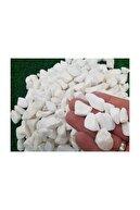 Ekodoğa Beyaz Dolomit Taş 5 kg 1,5-2,5 cm Bahçe Taşı Dekoratif Taş Dere Taşı