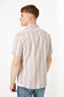 Marks & Spencer Erkek Sarı Çizgili Oxford Gömlek T25003307M