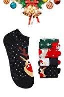 Babishop 4'lü Yılbaşı Christmas Noel Renkli Kısa Çorap Seti