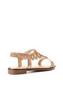 Bambi Rose Kadın Sandalet L0512025536