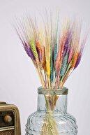 MiniHediye Şoklanmış Doğal Kuru Çiçek Rengârenk Başak Demeti 30-40cm