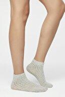 Penti Siyah - Çok Renkli Colosio 2li Patik Çorap