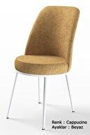Canisa Concept Nil Serisi Beyaz Sabit Mutfak Masa Takımı +4 Adet Cappucino Sandalye
