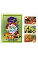 ONYIL OYUNCAK 50 Parça Eğitici Resimli Kartlar Sebze Meyveler Ony-05
