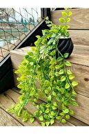 FARALYA HOME Ikea Model Sarkıt Çiçek Beton Saksılı Yapay Çiçek