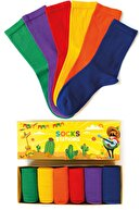Socks Stations 6'lı Pastel Renkler Çorap Özel Kutulu