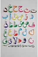Dıy Toy/Taba Grup Mıknatıslı Kuran Harfleri Elif-ba 40 Parça
