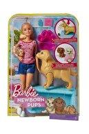 Barbie Newborn Pups Pet And Doll Oyun Seti