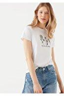 Mavi Papatya Baskılı Beyaz Tişört 1600528-620