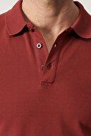 Altınyıldız Classics Erkek Bordo Polo Yaka Cepsiz Slim Fit Dar Kesim %100 Koton Düz Tişört