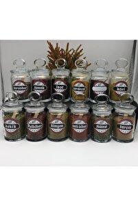 Etiketli 12 Li Kıtchen Mini Kavanoz Baharatlık Ve Ölçü Kaşığı
