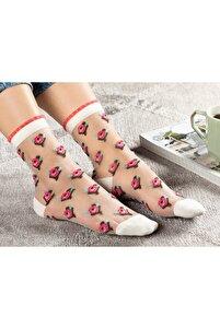 Kadın Pembe Ten Çorap