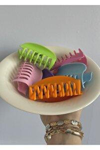 Kadın Pembe 6'lı Rengarenk Mandal Toka Seti