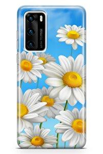 Huawei P40 Kılıf Papatya Kokulu Arka Kapak Koruma Desenli Full Koruyucu