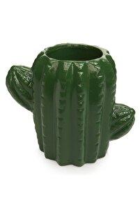 Yeşil Kaktüs Beton Saksı