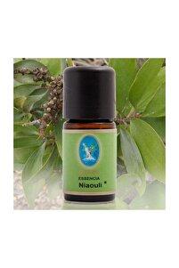 Defne Essencia Organik Niaouli Yağı 5 Ml . Aromaterapi Uçucu Yağ Cilt Ve Bakım Yağı