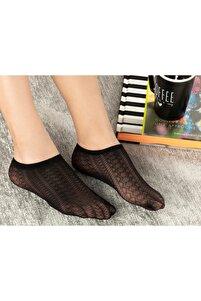Kadın Siyah Ten Çorap Violet