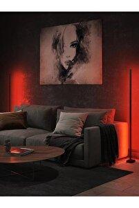 Led Full Rgb 256 Renk Dekoratif Lambader -led Lamba Işık Sistemi