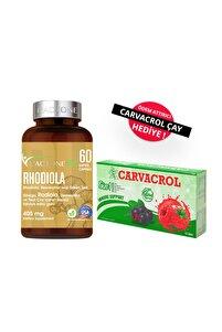 Rhodiola 500 mg  60 Kapsül
