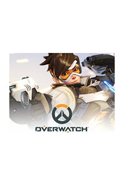 Aral Overwatch Legendary Edition Pc Oyun