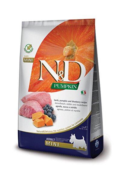 N&D Nd Pumpkin Tahılsız Bal Kabaklı Kuzu Etli Yaban Mersinli Küçük Irk Yetişkin Köpek Maması 2.5 kg
