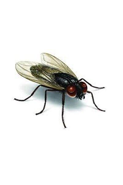 Fly Bant Karasinek Tuzağı 100* 30 Feromenli,yapışkanlı, Zehirsiz Karasinek Tuzağı 30 Cm X 100 Mt
