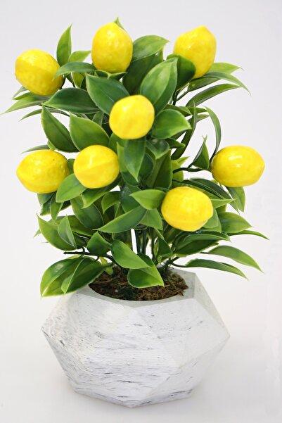 Yapay Çiçek Deposu Geometrik Mini Beton Saksıda Limon Ağacı 24 Cm