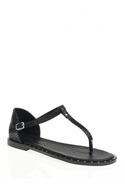 David Jones Kadın Parmak Arası Sandalet Siyah Yılan