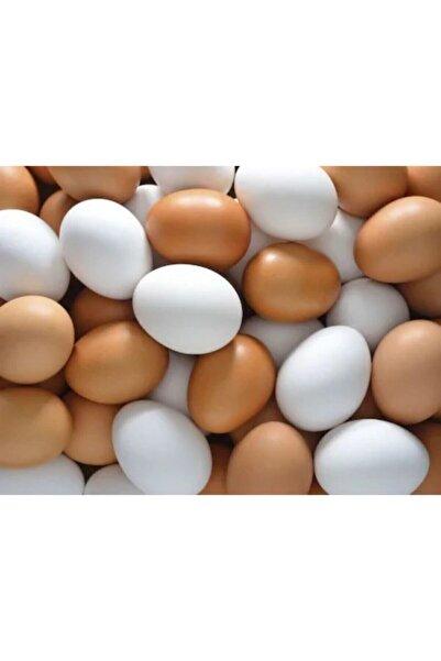 Ekip Tavukçuluk Sahte Yumurta 20 Adet