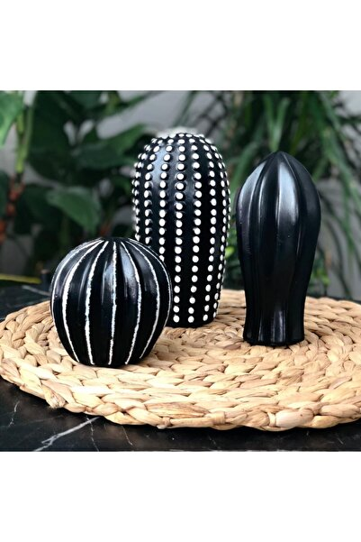 biucuza Siyah Beyaz Detay Dekoratif 3'lü Kaktüs