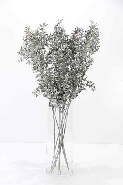 Dekorsende Kurutulmuş Ruskus (kokina) Demeti Gümüş