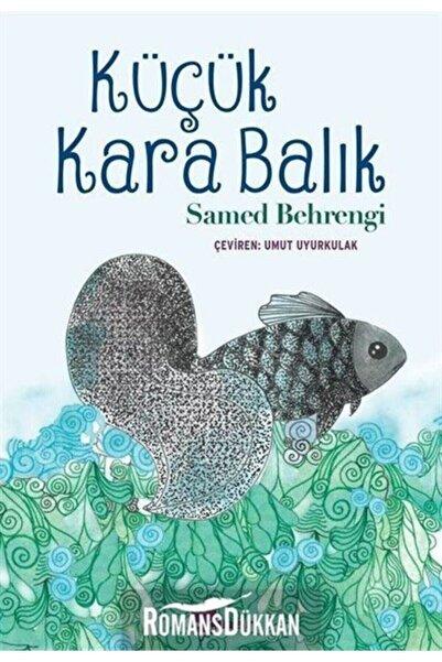 Çınar Yayınları Küçük Kara Balık