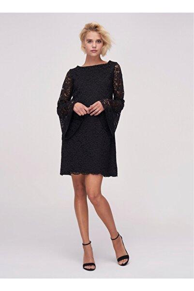 Ribellion Kadın Siyah Çan Kollu Dantel Elbise