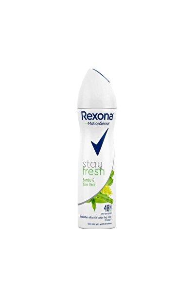 Rexona Stay Fresh Bambu & Aleo Vera 150ml