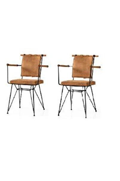 Erezogulları Mobilya Penyes Deri Kollu Mutfak Cafe Bahçe Sandalyesi 2 Li
