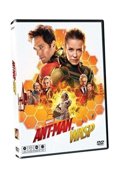 Yeni Film Dvd Antman Ve Wasp
