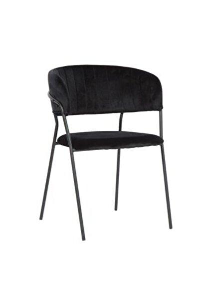 Vitale Serra Siyah Ayaklı Kollu Sandalye Ms.serra-sa